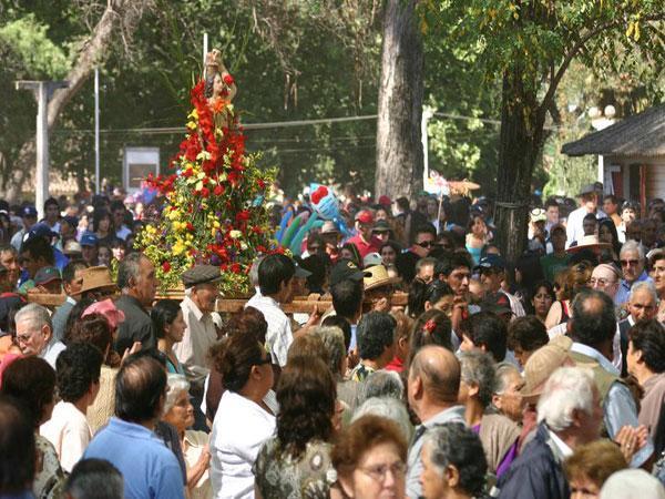 panimavida_2012